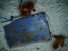 Stages of 12.11.2011: 8d) City Surveying Official Fixed Point - Grabmal Feldmarschall Laudon, begraben im Park von Schloss Laudon - Apples of Paradise, Hommage a Friedemann der Teppichweber