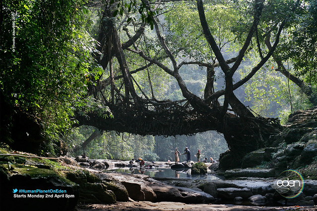 Rivers - Meghalaya, India