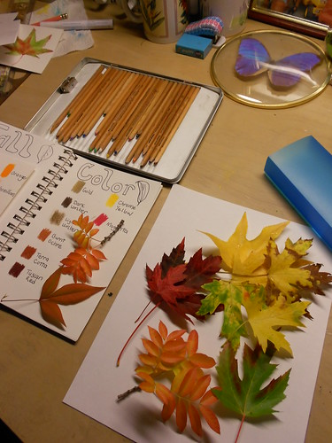 Fall Color Leaf Nature Journal