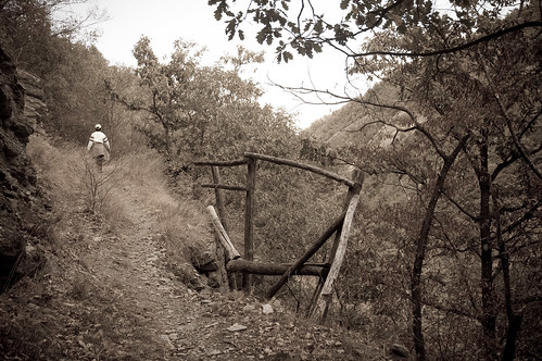 Rinforzo di sentiero