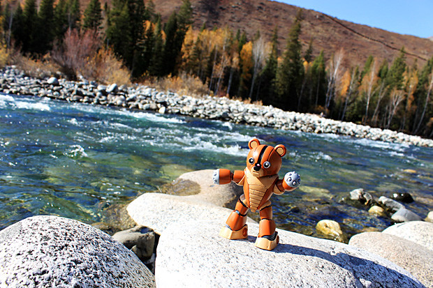 熊霸和基友们的新疆之旅-星宫动漫