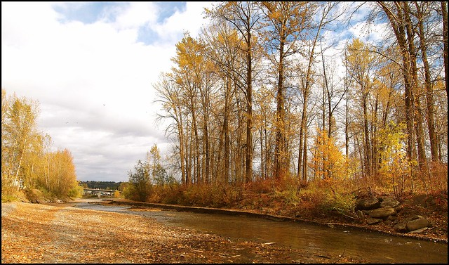 Baker Creek Bc