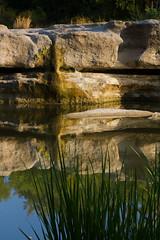 McKinney Falls Sans Water