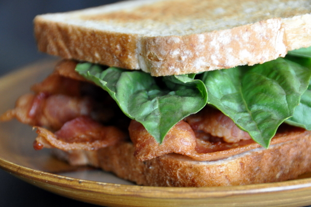 Bacon & Basil