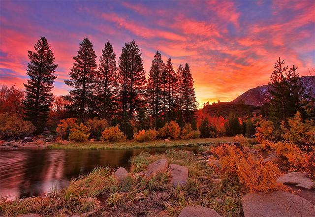 Morning Glow in the Sierra