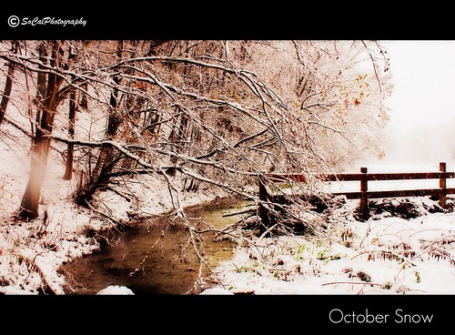 October Snow (explored)