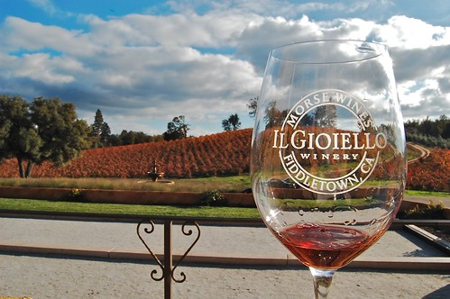 ilgioiellowinery autumnviewfrompatio colorhillafterharvest