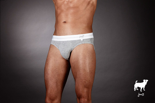 jac5-Loyal-Larry-Brief-Grey