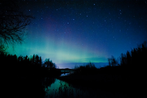 Northern lights above creek 1