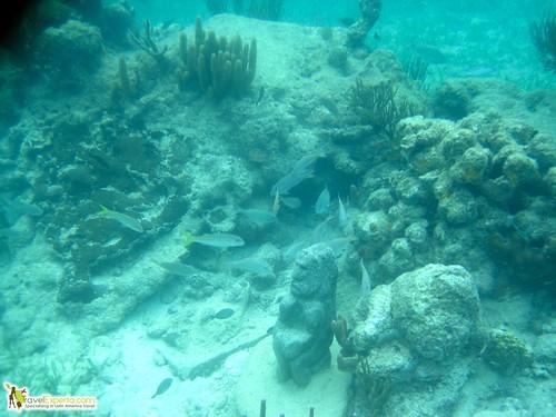 underwater museum second largest barrier reef in the world roatan honduras