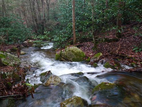 horse mountain creek cove wilderness sampson squibb turkeypen