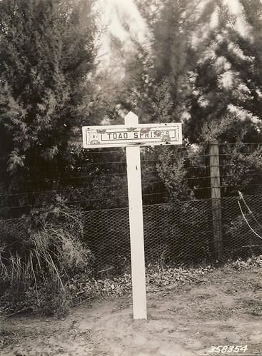 Toad Springs, 1926
