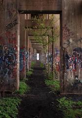 Abandoned Coal Pier 3