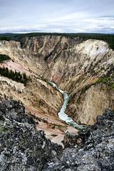 Yellowstone Canyon and Yellowstone River