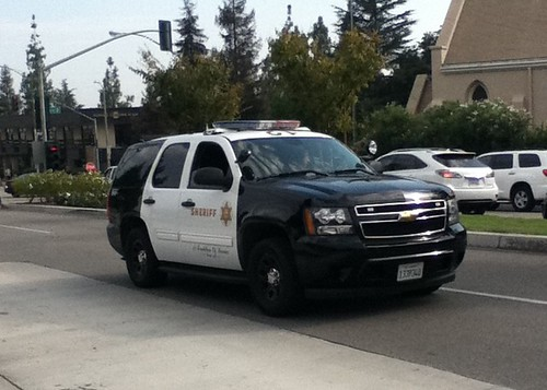 LOS ANGELES COUNTY SHERIFF DEPARTMENT (LASD)