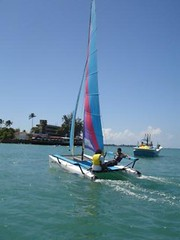sail, sailboat, sailing, sailboat racing, vehicle, sailing, sports, mast, watercraft, scow, catamaran, boat,