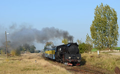 Polish Steam