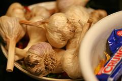 garlic 069