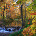 Autumn on Allequash  Creek