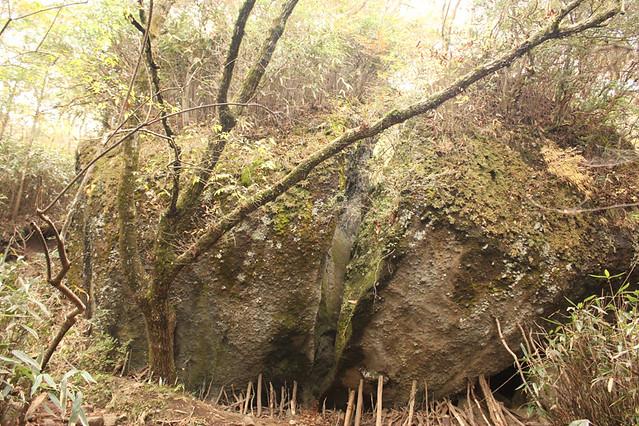 20111112_金時山_0049