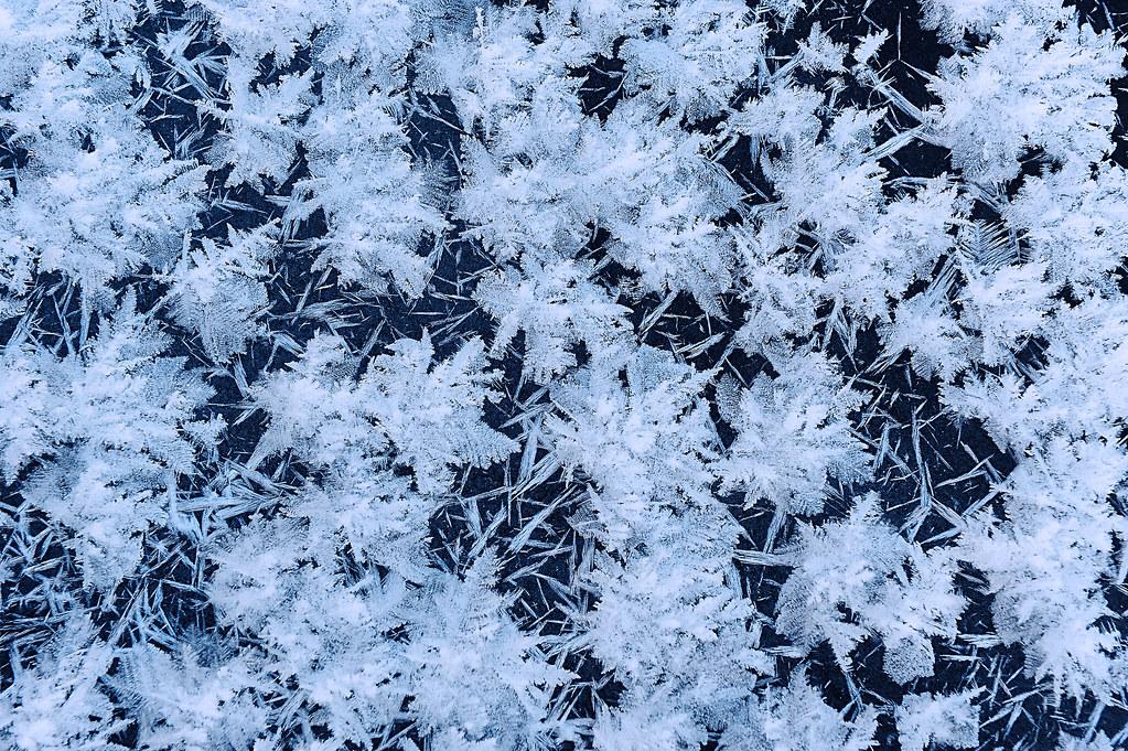 snow flake texture