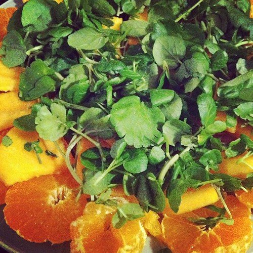 Orange-persimmon salad 2