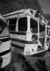 6366914077 280099ffe0 m Direct Car Insurance in WARREN MA 01083 has not been easier