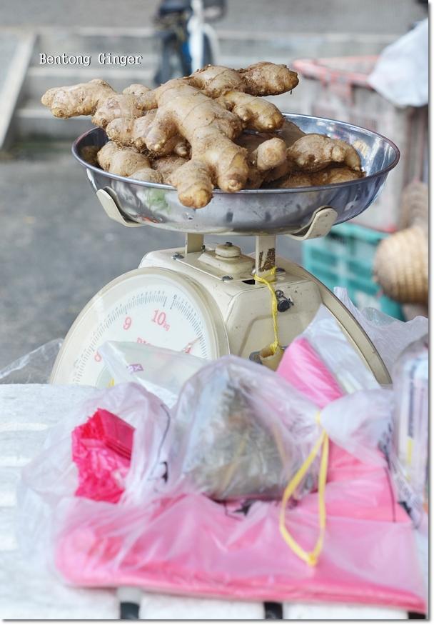 Bentong Ginger