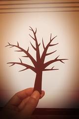Handcut bare tree