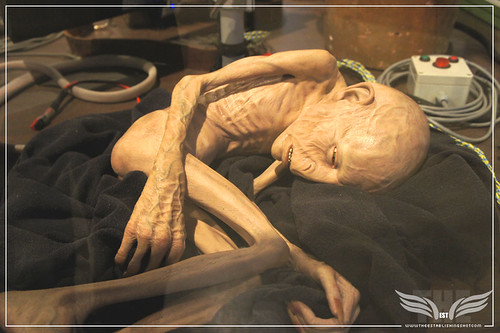 The Establishing Shot: The Making of Harry Potter Tour - Creature Shop Voldemort's mangled soul in Limbo by Craig Grobler