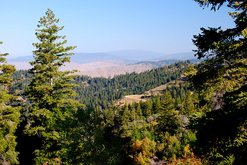 trees mountains fall nature landscapes scenery resort idaho pines bogusbasin nearboise