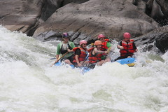 White Water Rafting-nymboida River