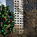 The Traffic Light Tree - Canary Wharf