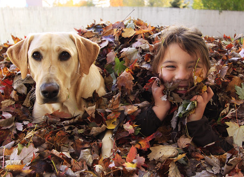 hangin' in the leaf pile