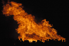 wildfire, event, fire, disaster, flame,