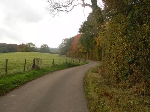 Aesthetically pleasing road