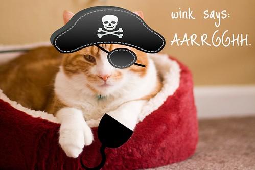 captain wink sparrow.