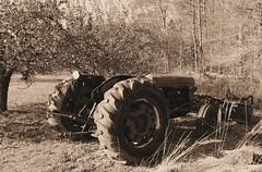 Busher Farm