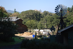 Connolly Ranch in Nappa Valley
