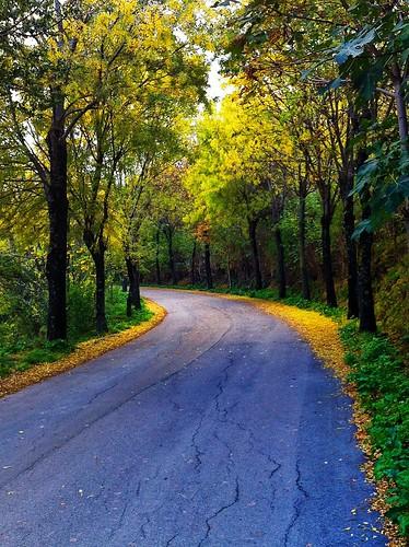 Perano - Autunno e foglie