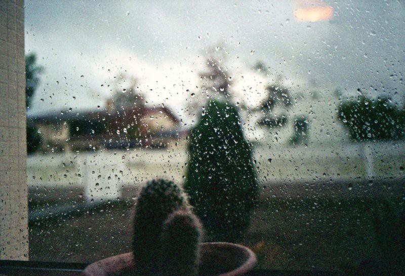 a amizade durante os dias de tempestade