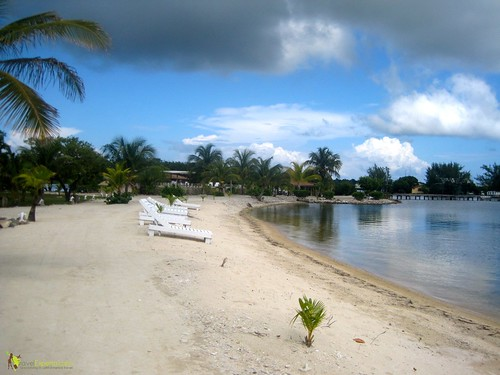 Hotel Reviews - Laguna Beach Resort in Utila, Honduras