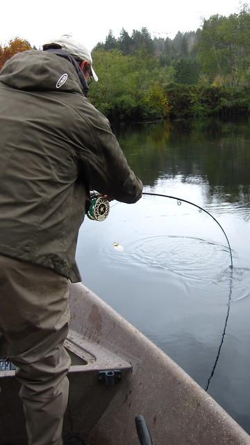 Salmon Fishing
