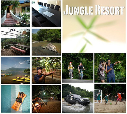 Jungle Resort