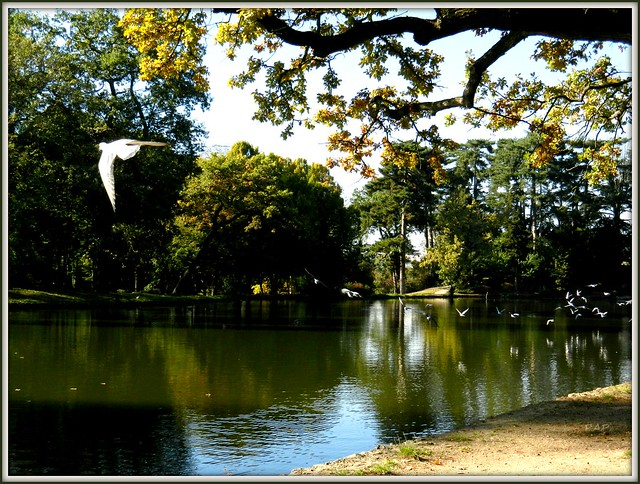 Flickr  Photo Sharing! ~ Bois De Boulogne Pute