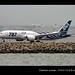 Boeing | 787-881 | Dreamliner | All Nippon Airways | JA801A | Hong Kong | HKG | VHHH by Christian Junker - AHKGAP