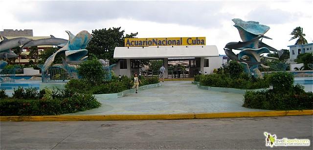 national aquarium in havana cuba