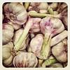 #garlic clove against #vampires at the #weeklymarket