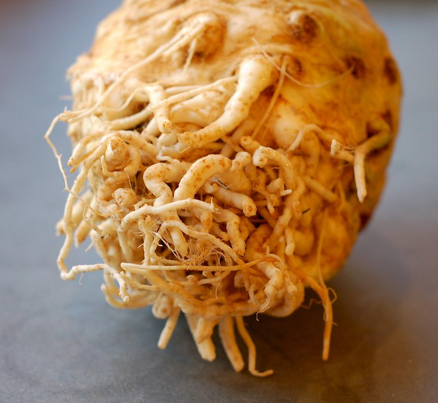 Big old knob of celeriac by Eve Fox, Garden of Eating blog, copyright 2011