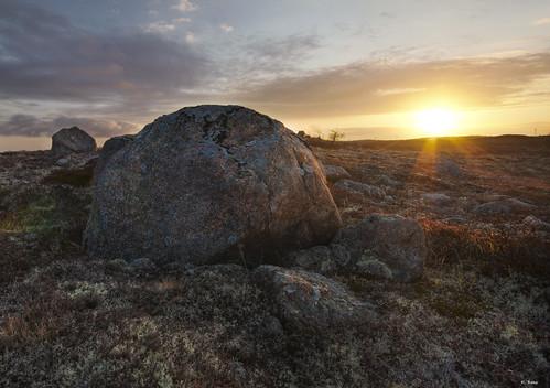 sky sun canada rock sunrise newfoundland landscape moss barren butterpotpark